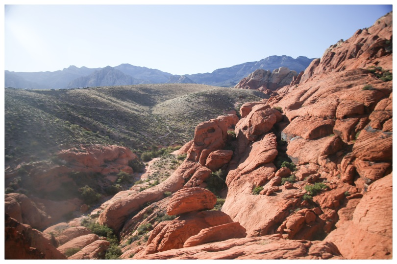 Red Rock national Park